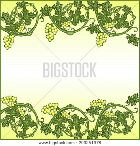 pattern with grapes and vine on light background