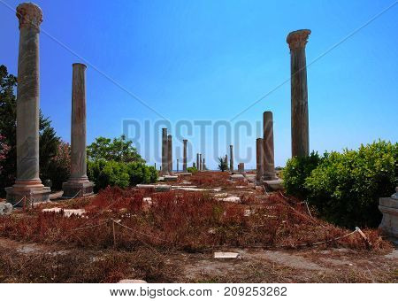 Remains of ancient columns at Al Mina excavation site at Tyre in Lebanon