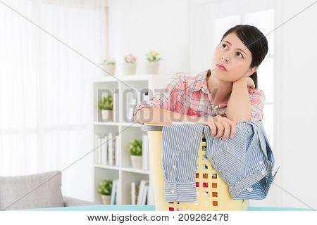 Beauty Elegant Housewife Doing Housekeeping