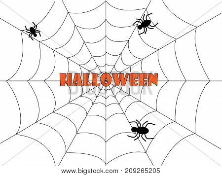 Web and spider halloween background isolated on plain white drop
