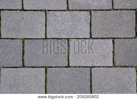 Modern city pavement. The gray brick street