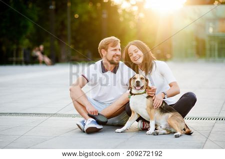 Cute young couple sits on the earth closely having nestled to each other. Next to them good-natured beagle. Beautiful summer evening. Great mood.