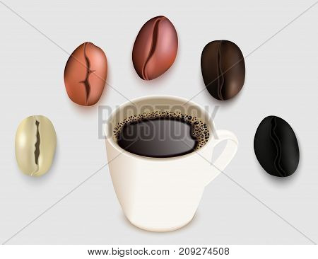 Cup of coffee and coffee beans vector 3d realistic illustration. Green unroasted and roasted coffee bean. Very light, medium light brown medium dark brown and dark brown degrees of roast.