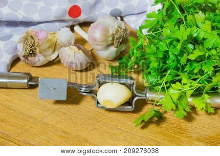 Crushing garlic to add to the dish. Whole and chopped garlic on a cutting Board made from natural oak. Fresh parsley.