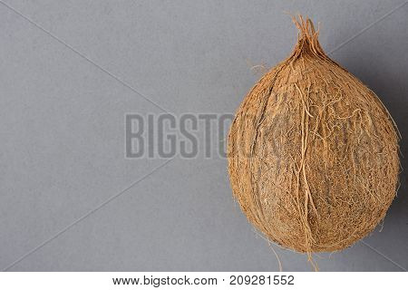 Whole Ripe Coconut on Grey Background. Side Position. Template for Poster Flyer. Tropical Vacation Wellness Spa. Beach Party. Healthy Oil Bodycare Skin Beauty Summer. Copy Space