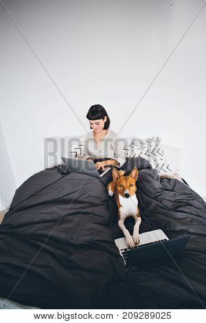 Funny adorable cute concept of woman working on laptop from her home bed and her pet dog with serious face typing with paws on keyboard of notebook computer