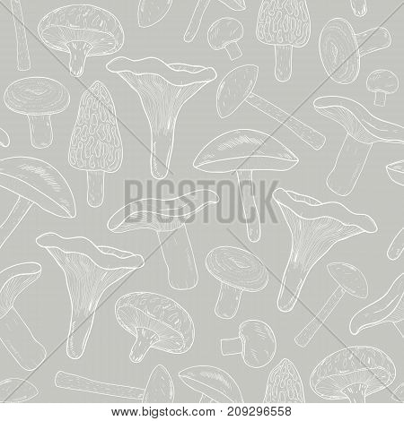 Edible mushrooms outline seamless pattern. Hand drawn fungi. Birch bolete, blewits, brown, champignon, shiitake, chanterelle, wrinkled. Contour vector illustration on gray background