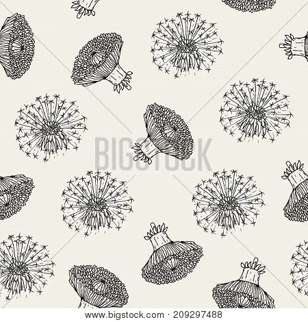 Beautiful floral seamless pattern with dandelion flower heads and blowballs hand drawn in antique style. Botanical vector illustration for fabric print, wallpaper, wrapping paper, backdrop