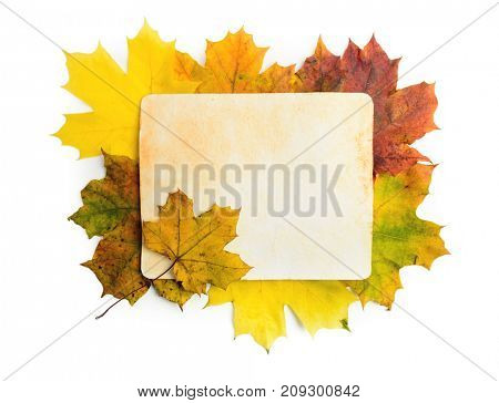 Old grunge paper page over fall leaves isolated on white. Clipping path