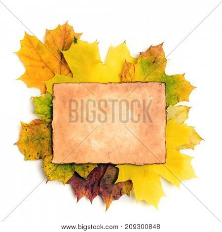 Old grunge paper page over fall leaves isolated on white