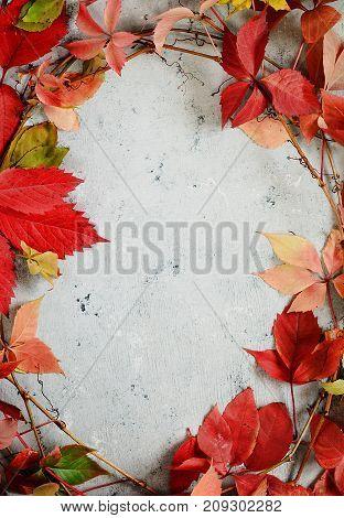 Autumn arrangement of leaves. Autumn background. Background with autumn theme