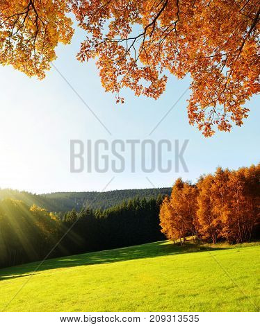 Autumn landscape in the National park Sumava, Czech Republic.