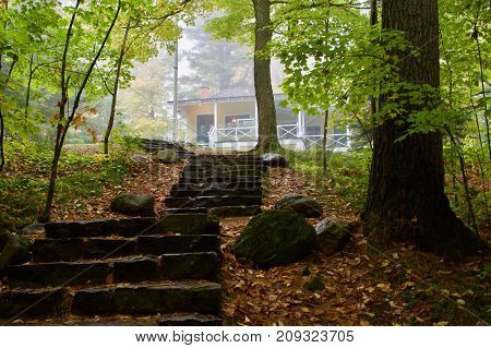 View on stairs, green trees and yellow leaves