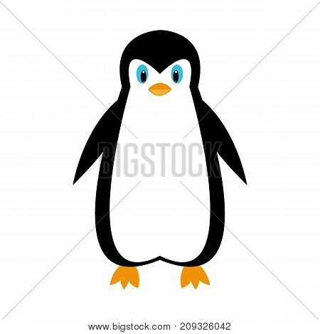 cartoon polar penguin on white background illustration