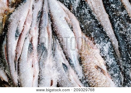 Lot Of Raw Fresh Salt Fishes. Top View