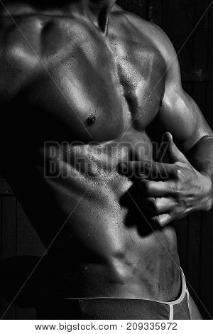 Male Splendid Muscular Bare Torso
