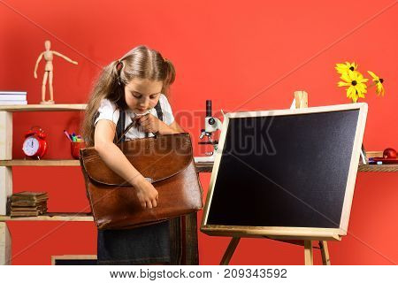 Girl Stands Near Blackboard, Copy Space. Schoolgirl Opens Brown Schoolbag