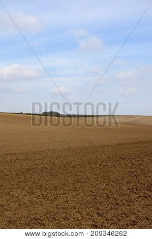 Hilly Cultivated Fields