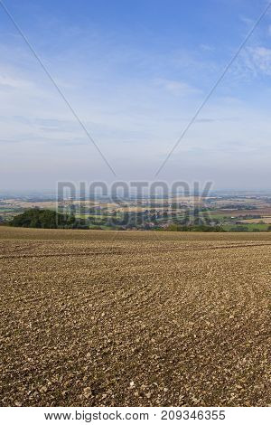 Cultivated Soil And Scenery