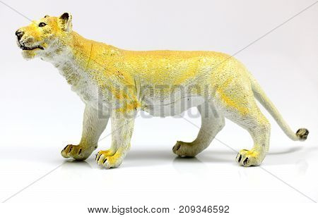 Female toy loin on a white background
