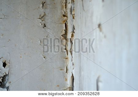 Water penetrations in walls and floors, moldy odors, sources of freestanding water