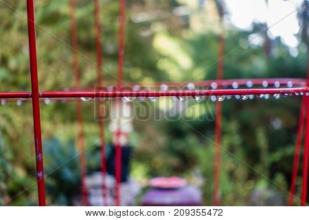 A closeup shot of raindrops hanging on a red plant cage.