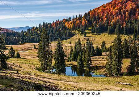 Pond In Carpathian Mountains In Autumn