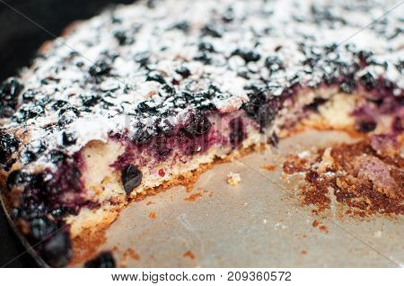 Blackcurrant Tart With Sugar Powder On A Round Baking Tray