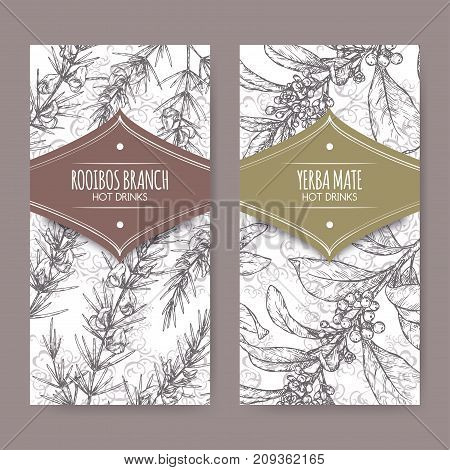 Set of two labels with Rooibos aka Aspalathus linearis and Yerba mate aka Ilex paraguariensis branches with leaves and flowers. Hot drinks collection. Great for cafe, bars, tea ads.