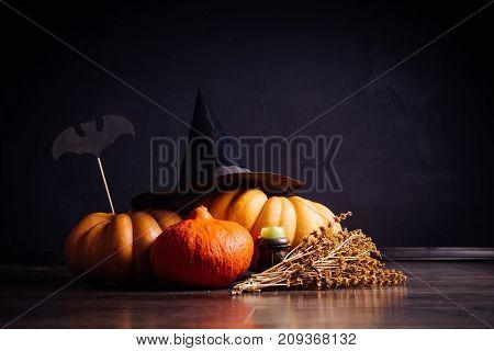 Halloween greeting card background. Halloween illustration with Halloween pumpkin, bat.Halloween vector illustration.