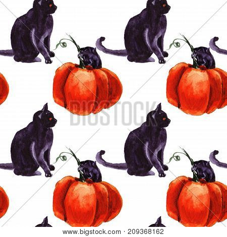 collection of different element fantasy cats to halloween cartoon