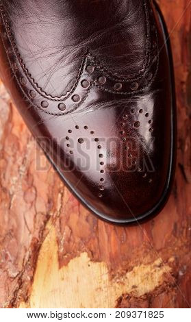 Brown Leather Chelsea Boots Polished On Pine Board. Waxing Boots.copy Space.top View.closeup