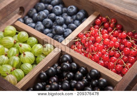 Red black currant blueberry gooseberry in a wooden box.