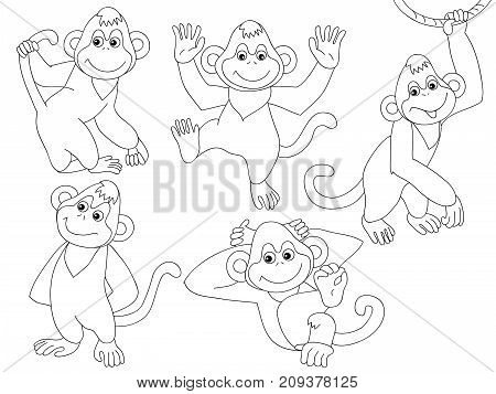Vector set of black and white cute, cartoon monkeys. Vector monkey. Monkeys vector illustration