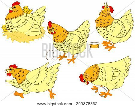 Vector set of cute cartoon hens and chickens. Vector hen. Hens and chickens vector illustration