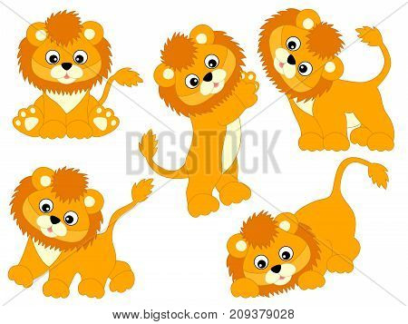 Vector set of cute cartoon lions. Vector lion cub. Lions vector illustration
