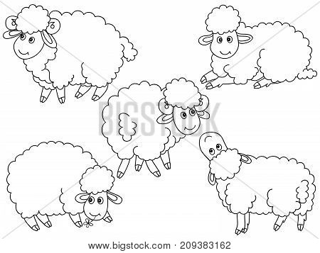 Vector set of black and white cute cartoon sheep. Vector sheep. Sheep vector illustration