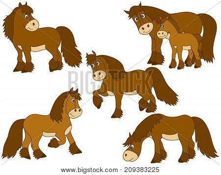 Vector set of cute cartoon horses. Vector horse. Horses vector illustration