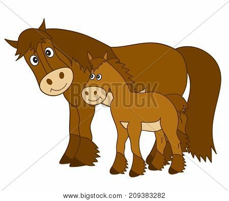 Vector cute cartoon horse with foal. Vector horse. Horses vector illustration
