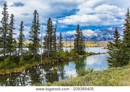 The valley along the Pocahontas road. Shallow-water lakes, overgrown with yellowed grass, picturesque firs and distant mountains. Concept of active and ecological tourism