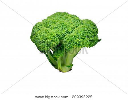 broccoli isolated on white background. food object.