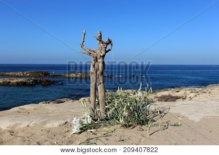 a wooden root resembling a man stands on the seashore