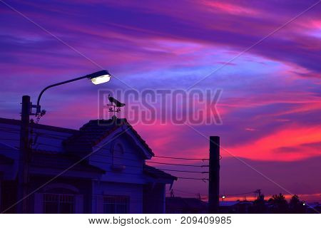 weather vane at sunrise with bright colors in clouds.