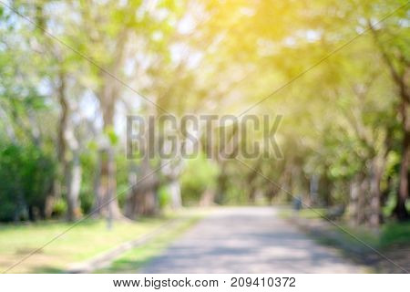 Blurred park with bokeh light nature background fall autumn season