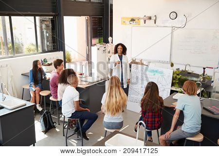 Teacher presenting to high school science pupils, high angle