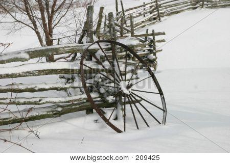 Winter Wheel