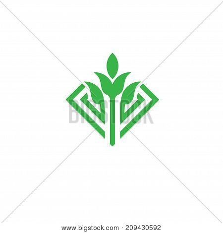 green leaf and sprout vector logo concept illustration.Agriculture logo, green leaf and Sprouts logo template, Eco green logo Design element