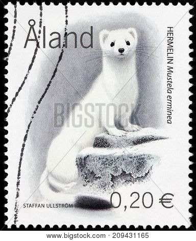 LUGA RUSSIA - AUGUST 20 2017: A stamp printed by ALAND ISLANDS shows Stoat (Mustela erminea) also known as the short-tailed Weasel in winter fur circa 2004
