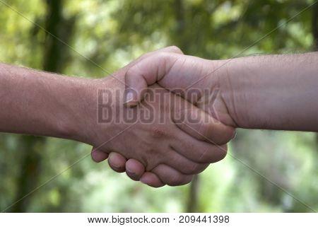 Handshake. Two people doing handshake against the view