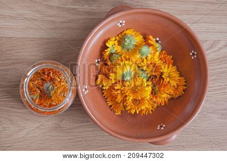It is image of herbal Pot maringold